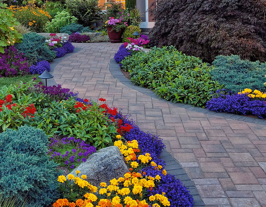 paving stone front walkway