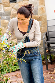 woman pruning shrub