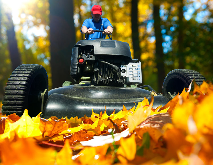 man mows fallen leaves
