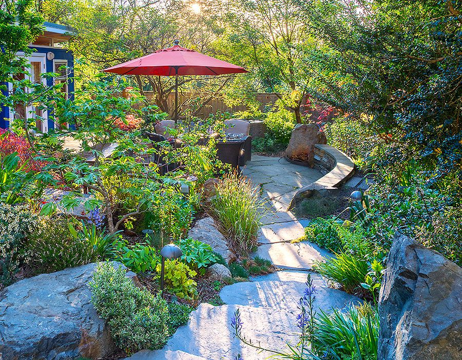 Nature's Best Backyard Oasis