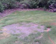 Flagstone Firepit - Before